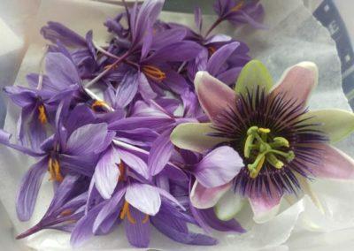 petale safran passiflore