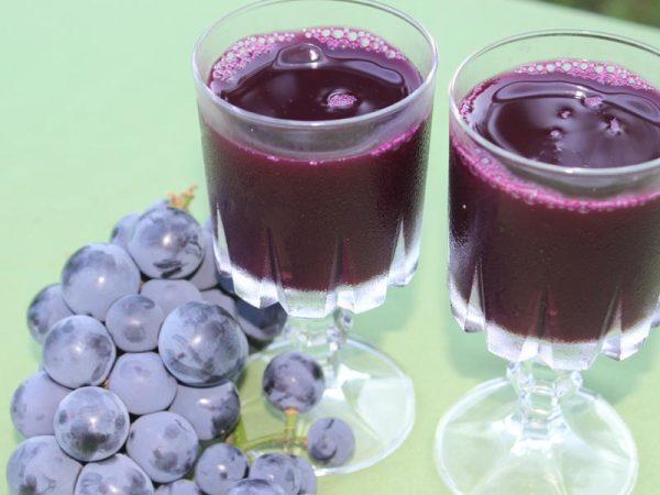Jus de raisin bleu - Serres René Robidoux